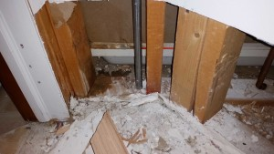 Water Damage from leaking shower walls